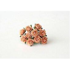 Розы. Цвет персиковый